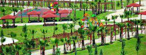 تصميم الحدائق المنزلية تنسيق الحدائق العامة و تخطيط  الحدائق التجارية
