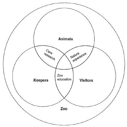 المخطط الوظيفي في تصميم حديقة حيوان