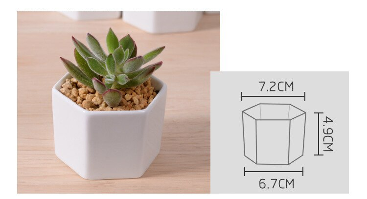 Set of 4/7/9/10 Hexagon Flowerpots White Ceramic Succulent Plant Pot with Bamboo Stand Home Office Christmas New Year Decoration