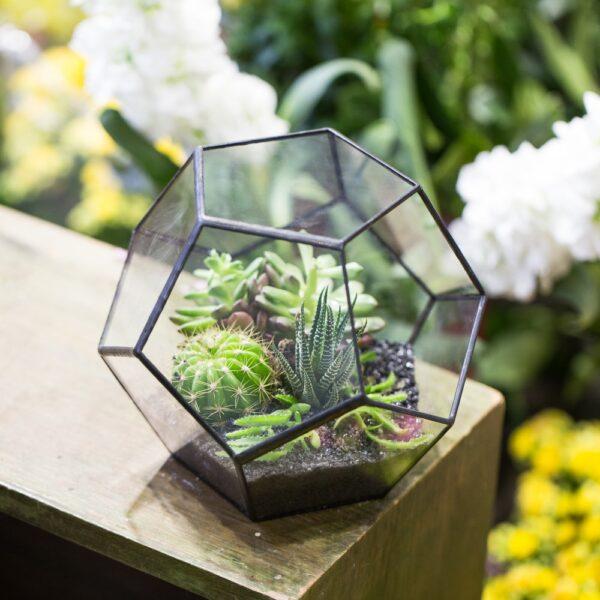 اناء الزهور و النباتات الهندسي اكسسوارات منزلية