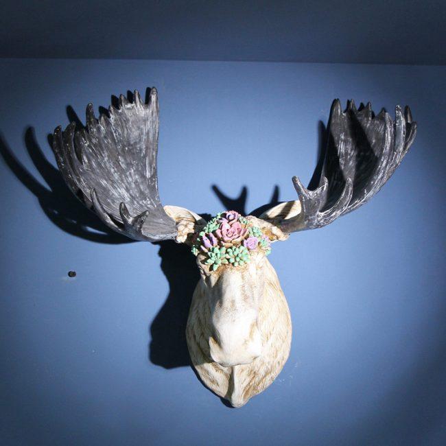 تمثال اكسسوار رأس الثور الامريكي اكسسوارات جدارية