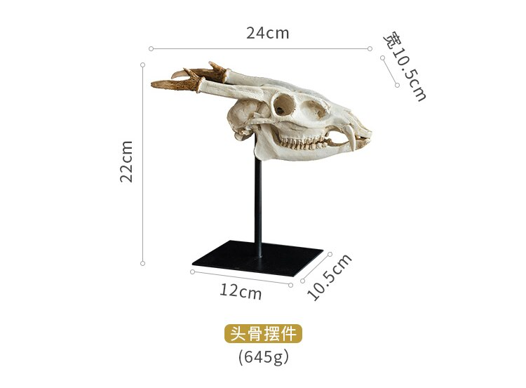 Leading Fossil Bone Resin Decoration Prehistoric Fossil Study Desktop Decor Designer Style Display Decoration Living Room Home