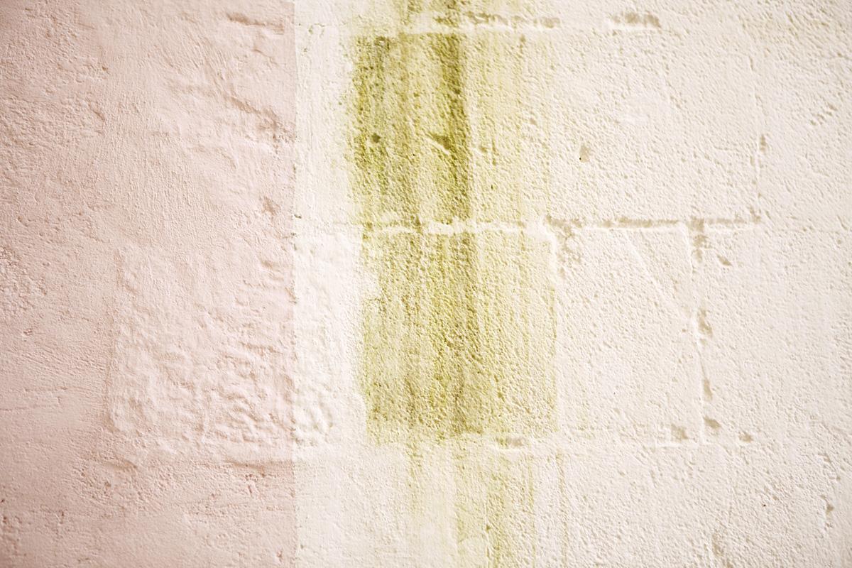 القوام والألوان الجدار | التصوير الفوتوغرافي بواسطة belathee