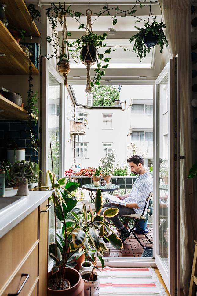 شرفة صغيرة ، شرفة ، غابة حضرية ، كتاب جديد ، داخلي ، تصميم داخلي ، تصميم داخلي