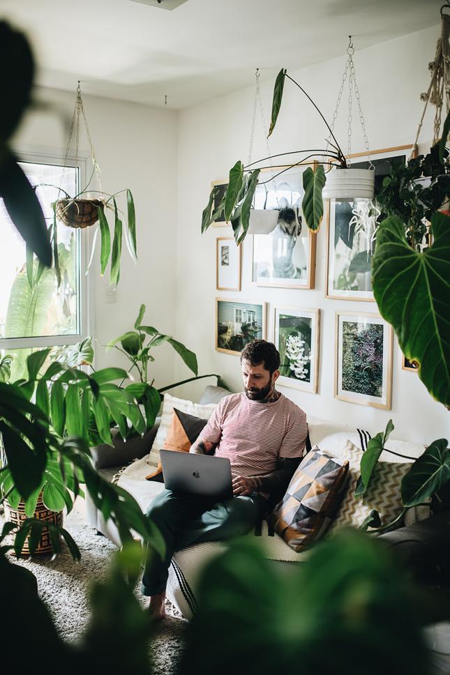 قبيلة النبات ، مدونو الغابة الحضرية ، كتاب جديد ، كتاب نباتي ، نباتات داخلية ، العيش مع النباتات