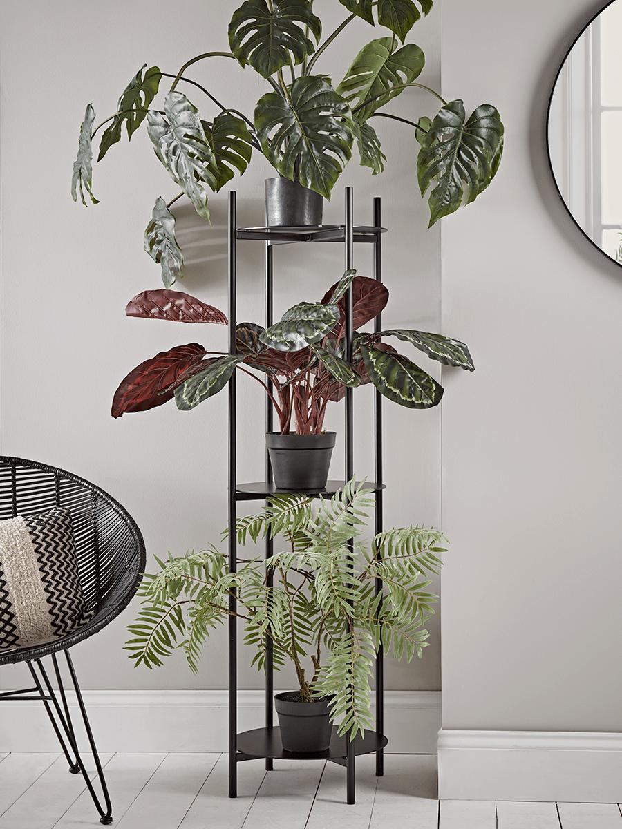10 من أفضل حوامل نباتات داخلية متدرجة