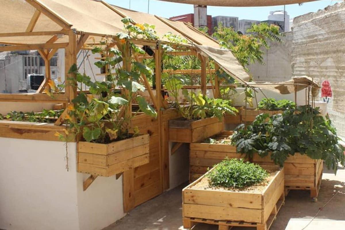 أفكار صيفية شابة لحديقة على السطح .. حوّل الشرفة إلى حديقة رائعة